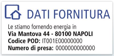 Dati Fornitura