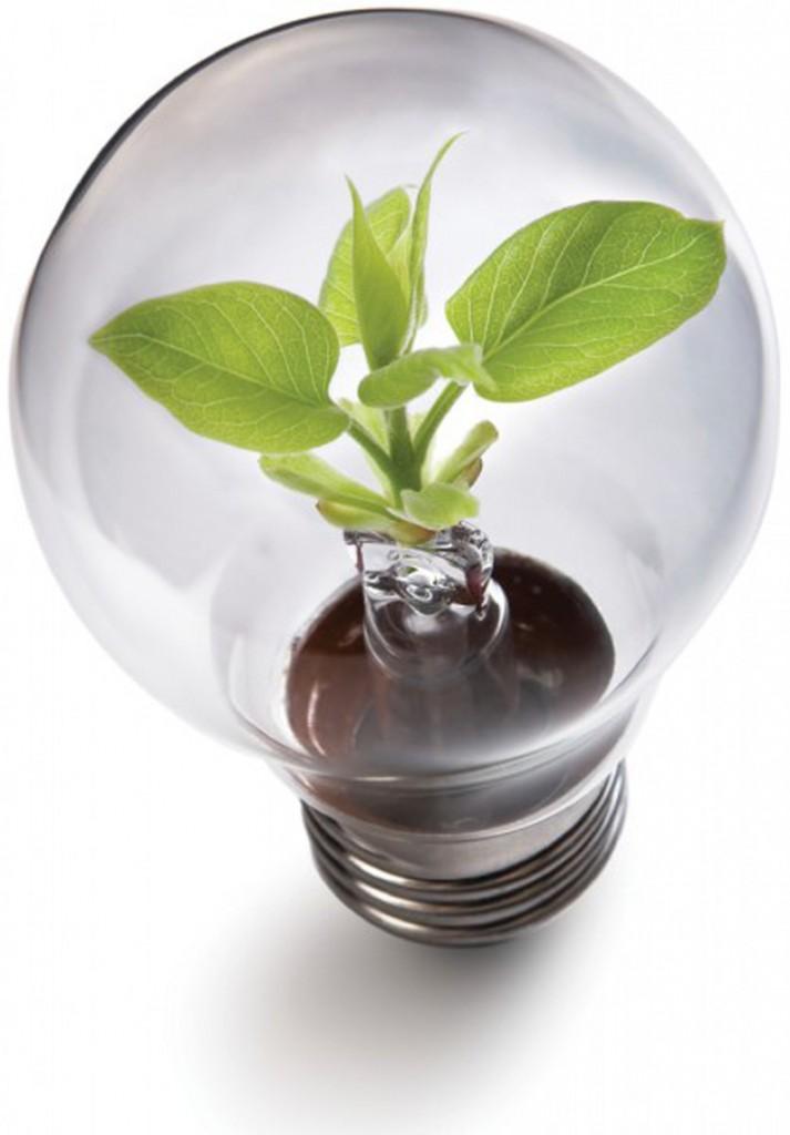 tariffe energia elettrica green