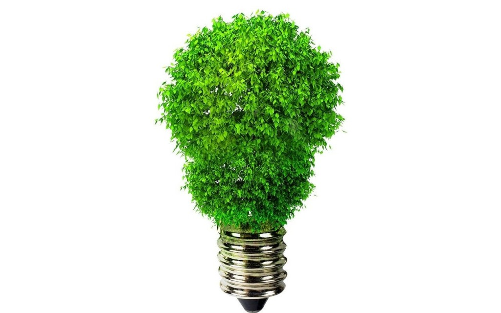 tariffa energia verde