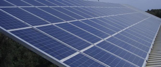 Dagli spinaci nuove frontiere delle eco-energie