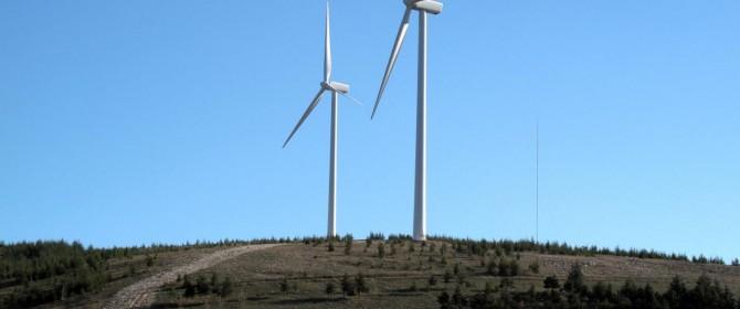 Nuovo investimento eco-energetico da parte di Google