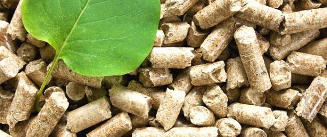 biomasse, enel lancia una nuova centrale a russi