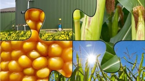 stangata sulle agroenergie, l'opinione confagricoltori