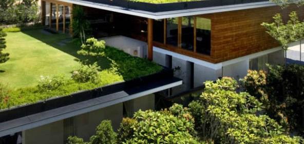 Giardini pensili rientrano nella detrazione del 50 for Giardini pensili